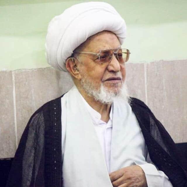 آية الله محمد باقر الناصري