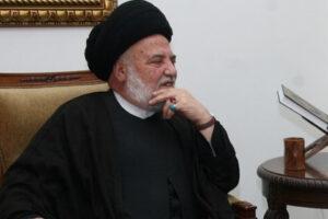 السيد محمد حسن الأمين